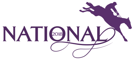 Image result for 2018 grand national