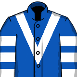 Frodon Silks