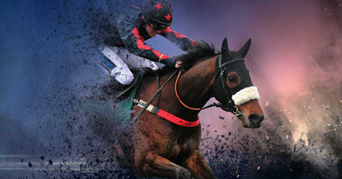 Grand national 2021 betting deals parimatch mobile betting wagershack