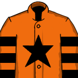 Jett - Silks - Horse - Grand National Runner