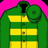 Grand National Racing Silk - JPM Green