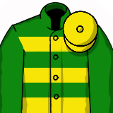 Grand National Racing Silk - JPM Yellow